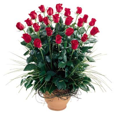 İzmir Konak çiçek yolla  10 adet kirmizi gül cam yada mika vazo