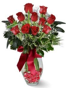 9 adet gül  İzmir Konak kaliteli taze ve ucuz çiçekler  kirmizi gül