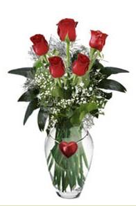 İzmir Konak yurtiçi ve yurtdışı çiçek siparişi  5 adet kirmizi gül ve kalp çubuklu