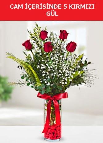 Cam içerisinde 5 adet kırmızı gül  İzmir Konak çiçek mağazası , çiçekçi adresleri