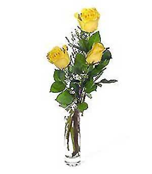 İzmir Konak yurtiçi ve yurtdışı çiçek siparişi  3 adet kalite cam yada mika vazo gül