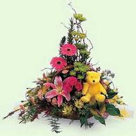 İzmir Konak çiçekçi telefonları  lilyum gerbera oyuncak