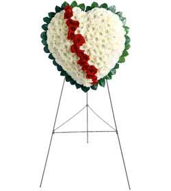 İzmir Konak yurtiçi ve yurtdışı çiçek siparişi  kalbimin tek sahibisin benim