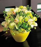 İzmir Konak kaliteli taze ve ucuz çiçekler  5 adet cam yada mika vazoda orkideler
