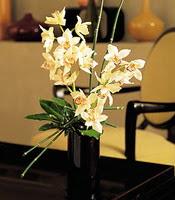 İzmir Konak güvenli kaliteli hızlı çiçek  cam yada mika vazo içerisinde dal orkide