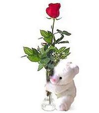 oyuncak ve gül tanzim   İzmir Konak internetten çiçek satışı