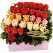 15 adet renkli gül ve cam   İzmir Konak çiçek servisi , çiçekçi adresleri