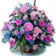 karisik mevsim kir çiçekleri  İzmir Konak online çiçek gönderme sipariş
