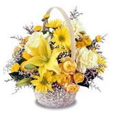 sadece sari çiçek sepeti   İzmir Konak online çiçek gönderme sipariş
