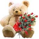 kocaman ayicik ve 10 gül   İzmir Konak anneler günü çiçek yolla