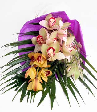 İzmir Konak çiçek gönderme sitemiz güvenlidir  1 adet dal orkide buket halinde sunulmakta
