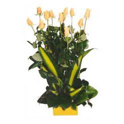 12 adet beyaz gül aranjmani  İzmir Konak çiçekçi mağazası