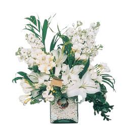 İzmir Konak yurtiçi ve yurtdışı çiçek siparişi  sadece beyazlardan olusmus mevsim cam yada mika tanzim