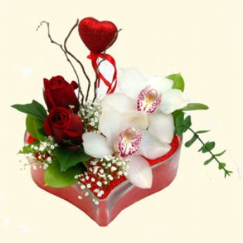 İzmir Konak çiçek satışı  1 kandil orkide 5 adet kirmizi gül mika kalp