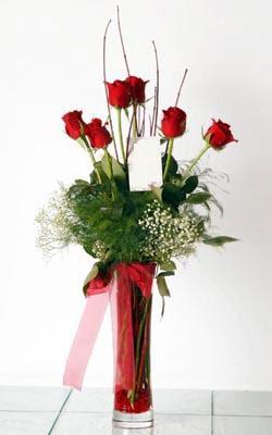 İzmir Konak çiçek gönderme sitemiz güvenlidir  6 adet kirmizi gül ve cam yada mika vazo