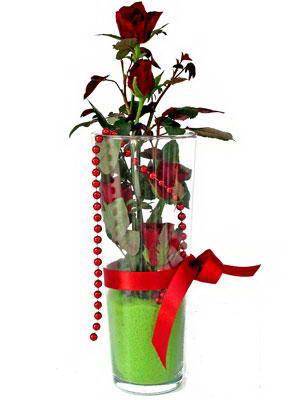 İzmir Konak çiçek yolla , çiçek gönder , çiçekçi   Cam yada mika içerisinde 9 adet kirmizi gül - sevdiklerinize özel