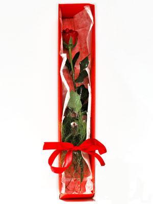 İzmir Konak internetten çiçek satışı  1 adet kutuda gül