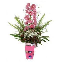 İzmir Konak çiçek online çiçek siparişi  cam yada mika vazo içerisinde tek dal orkide çiçegi