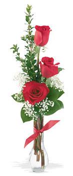 İzmir Konak çiçek gönderme sitemiz güvenlidir  mika yada cam vazoda 3 adet kirmizi gül