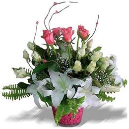 İzmir Konak çiçek gönderme sitemiz güvenlidir  cam yada mika içerisinde 7 beyaz 6 kirmizi 1 dal kazablanka