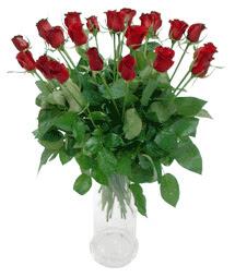 İzmir Konak uluslararası çiçek gönderme  11 adet kimizi gülün ihtisami cam yada mika vazo modeli