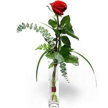 İzmir Konak çiçek gönderme  Sana deger veriyorum bir adet gül cam yada mika vazoda