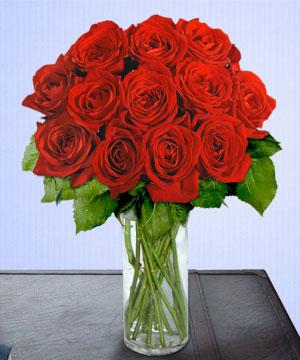 Anneme 12 adet cam içerisinde kirmizi gül  İzmir Konak çiçek mağazası , çiçekçi adresleri