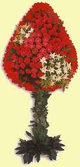 İzmir Konak cicekciler , cicek siparisi  dügün açilis çiçekleri  İzmir Konak çiçek , çiçekçi , çiçekçilik