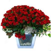 İzmir Konak güvenli kaliteli hızlı çiçek   101 adet kirmizi gül aranjmani