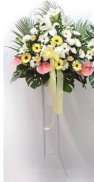 İzmir Konak çiçek yolla , çiçek gönder , çiçekçi    perförje çiçegi dügün çiçekleri