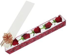 İzmir Konak kaliteli taze ve ucuz çiçekler  kutu içerisinde 5 adet kirmizi gül