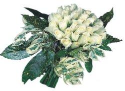 İzmir Konak yurtiçi ve yurtdışı çiçek siparişi  9 Beyaz gül Özel kisiler için
