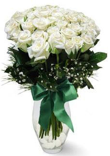 19 adet essiz kalitede beyaz gül  İzmir Konak güvenli kaliteli hızlı çiçek