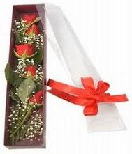 kutu içinde 5 adet kirmizi gül  İzmir Konak yurtiçi ve yurtdışı çiçek siparişi