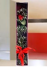 kutu içinde tek kirmizi gül  İzmir Konak çiçek , çiçekçi , çiçekçilik