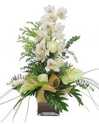 İzmir Konak hediye çiçek yolla  cam vazo içerisinde 1 dal orkide çiçegi