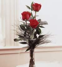 İzmir Konak kaliteli taze ve ucuz çiçekler  Vazoda 3 adet güzel gül