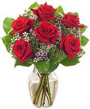 Kız arkadaşıma hediye 6 kırmızı gül  İzmir Konak yurtiçi ve yurtdışı çiçek siparişi