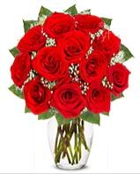 12 adet vazoda kıpkırmızı gül  İzmir Konak İnternetten çiçek siparişi