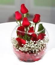 Cam fanus içerisinde 9 adet kırmızı gül  İzmir Konak online çiçekçi , çiçek siparişi