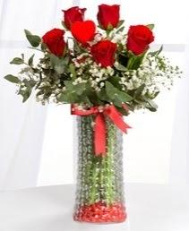Cam vazoda 5 adet kırmızı gül kalp çubuk  İzmir Konak hediye sevgilime hediye çiçek