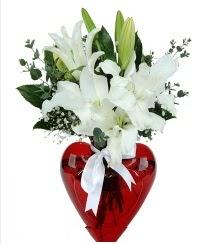 Kalp vazoda 3 kazablanka çiçeği  İzmir Konak çiçek siparişi vermek