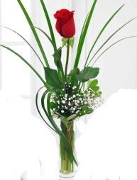 Cam içerisinde 1 kırmızı gül  İzmir Konak online çiçek gönderme sipariş