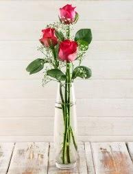 Cam içerisinde 3 kırmızı gül  İzmir Konak 14 şubat sevgililer günü çiçek