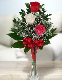 Camda 2 kırmızı 1 beyaz gül  İzmir Konak hediye sevgilime hediye çiçek