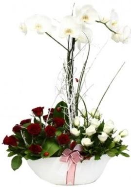 Tek dal beyaz orkide 8 beyaz 8 kırmızı gül  İzmir Konak 14 şubat sevgililer günü çiçek