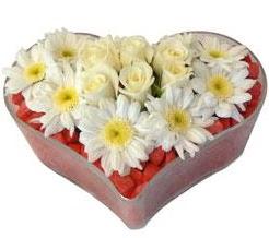 Kalp içerisinde 7 beyaz gül ve papatyalar  İzmir Konak kaliteli taze ve ucuz çiçekler