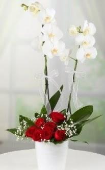 2 dallı beyaz orkide 7 adet kırmızı gül  İzmir Konak çiçek gönderme