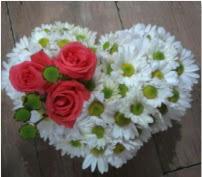 3 adet kırmızı gül mika kalptte papatyalar  İzmir Konak kaliteli taze ve ucuz çiçekler