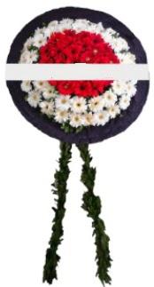 mozele çiçeği  İzmir Konak çiçek satışı